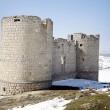 Castillo 5